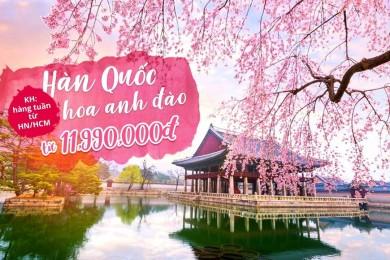 SEOUL - NAMI - EVERLAND - BẢO TÀNG 3D (TN)