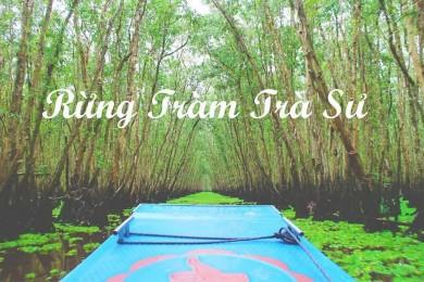 Mùa nước nổi: Đồng Tháp - VQG Tràm Chim - Đồng Sen