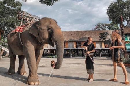 Buôn Ma Thuột - KDL KoTam - Buôn Đôn - Bảo tàng Thế giới Cafe - Thác DraySap - DrayNur